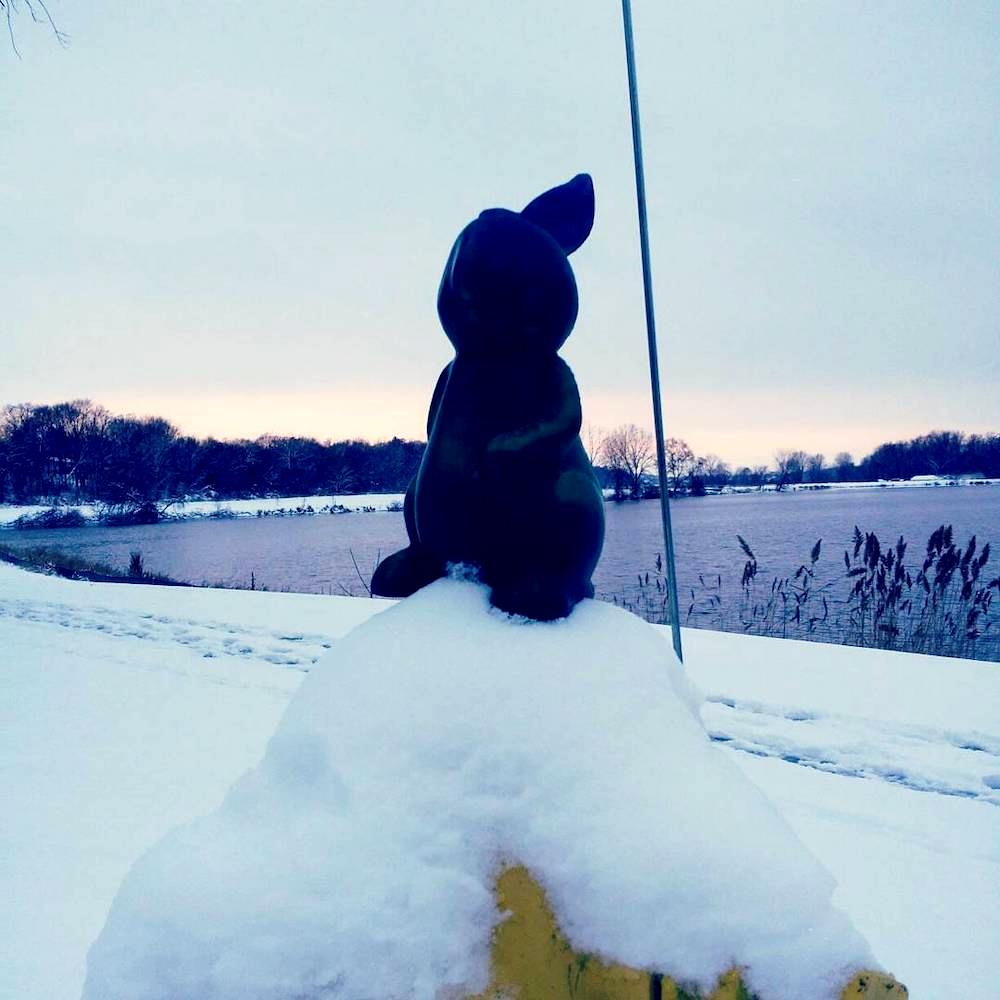 Mr Bunny continues his lake exploriation_clipped_rev_1