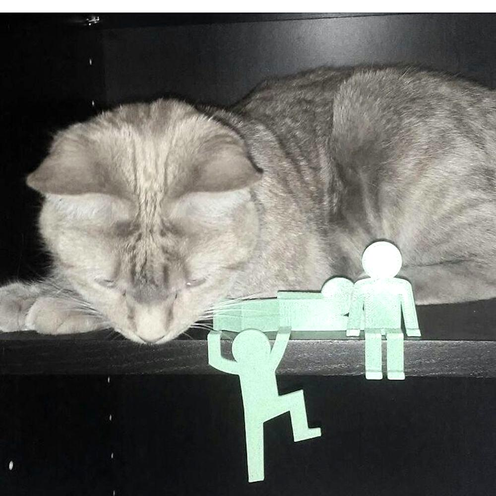 This cat is being visited by little green men_clipped_rev_1